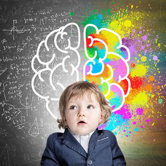 Baby-brain-color-logic-WPS
